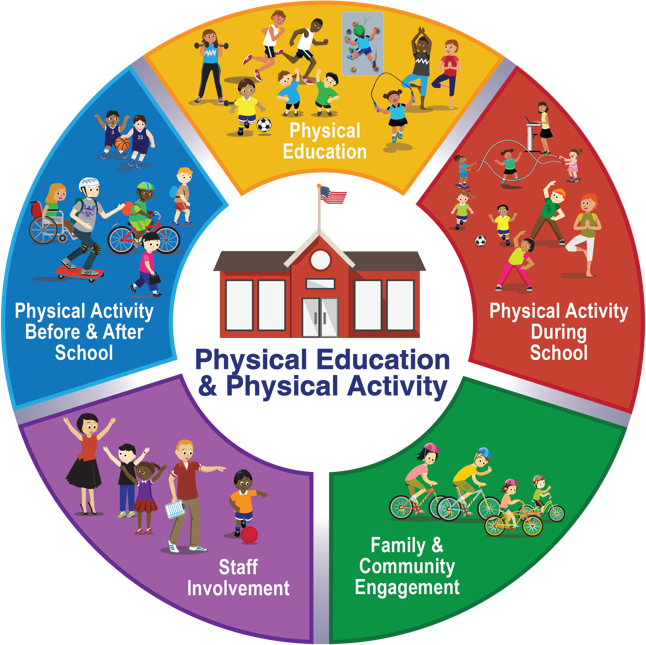 To Help Schools Be Strategic In Addressing The Physical Education And Physical Activity Core Component Of The Whole School Whole Community